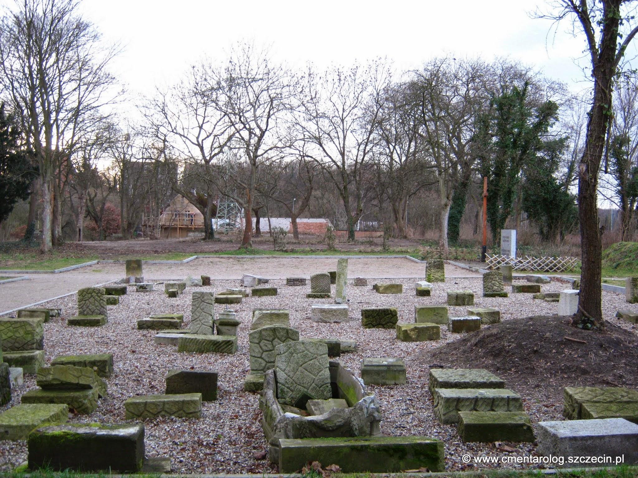 widok na cały teren dawnego cmentarza (fot. 14.01.15 r.)
