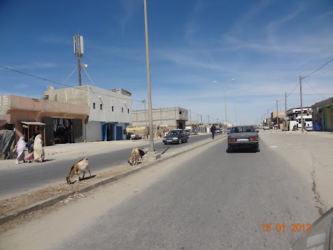 marrocos - Marrocos e Mauritãnia a Queimar Pneu e Gasolina - Página 6 DSC05972