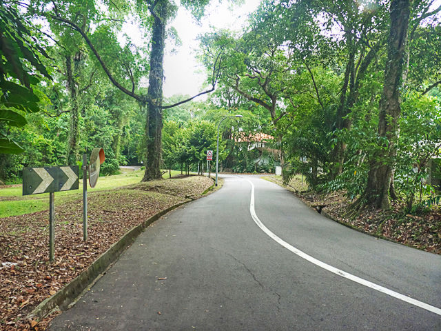 Road towards Loewen Gardens