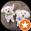 tonyntrisha