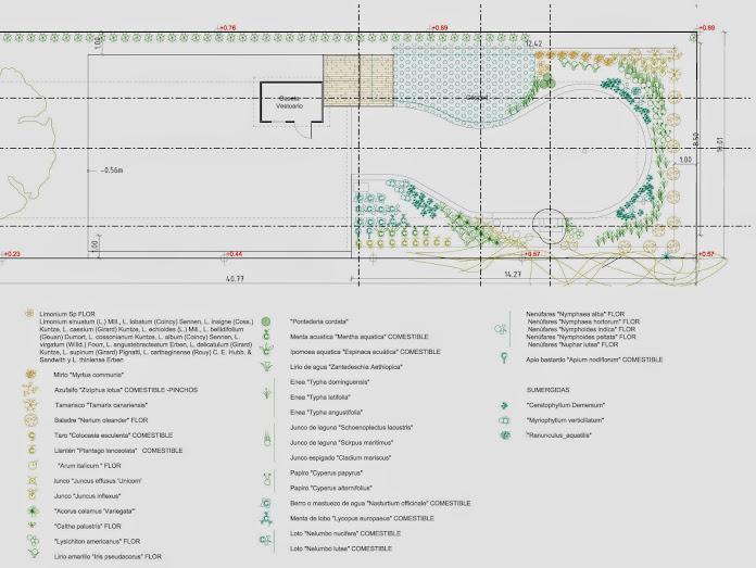 Diseño de piscinas ecológicas