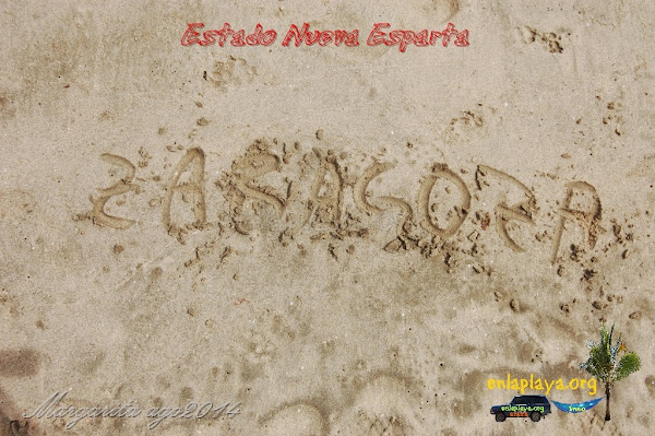 Playa Zaragoza, Estado Nueva Esparta, Municipio Gomez