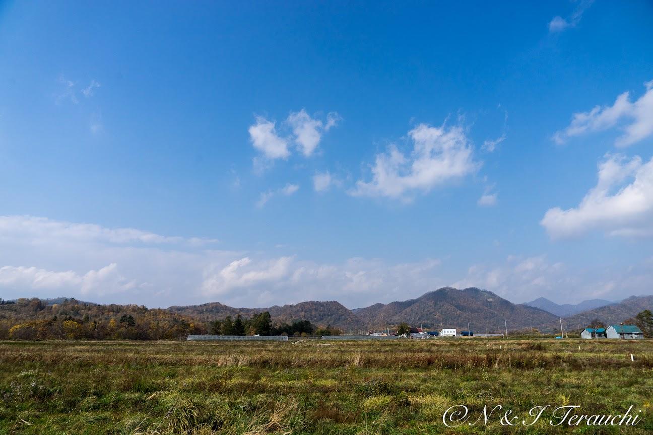 遠くに山々を望む風景