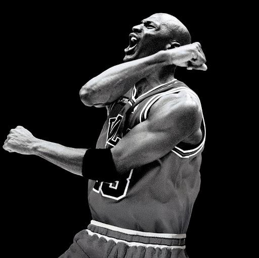 Air Jordan Photo 6