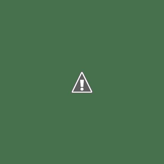 Club de Leones de Necochea