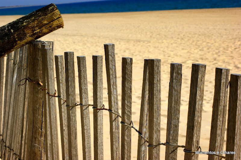 Praia Verde, protecção das dunas
