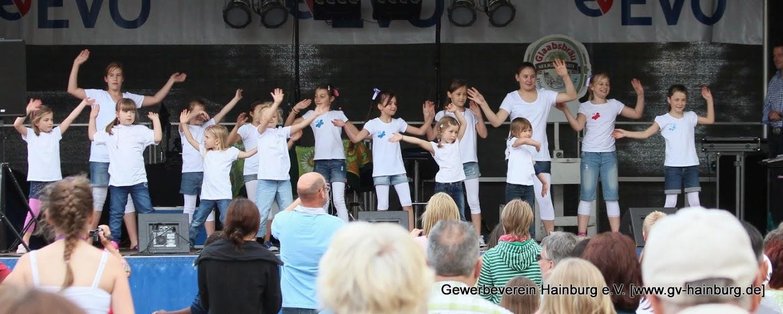 Auftritte am Hainburger Markt