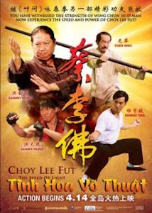 Lò Võ Trung Hoa - Choy Lee Fut poster