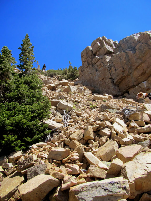Steep, loose route through the cliffs to the ridge of East Notch Mountain