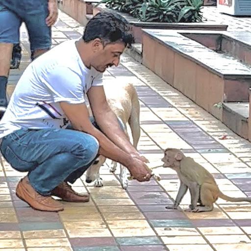 Umar Hameed Photo 11