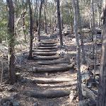 Stairs up from Kianiny Bay (102310)