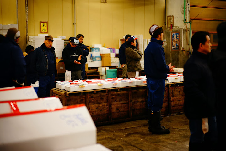 tuna meat samples in tsukiji fish market
