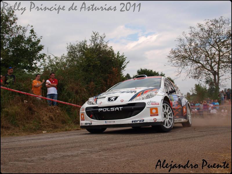 Rally Principe de Asturias P9102394