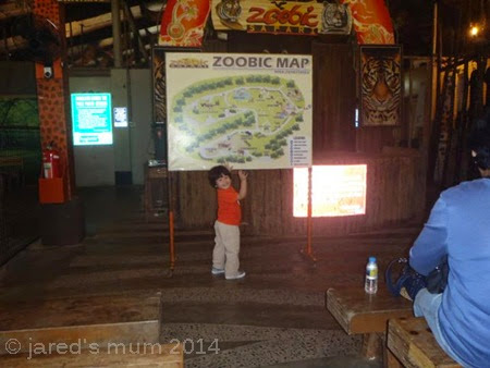 zoo, Zoobic Safari, travel, educational places for children to visit, destination