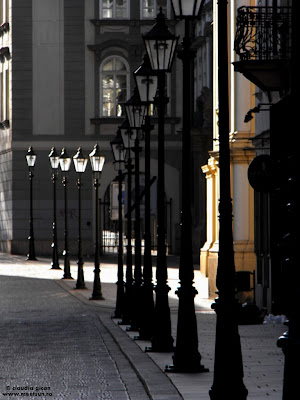 fotografie de strada - aleea cu felinare