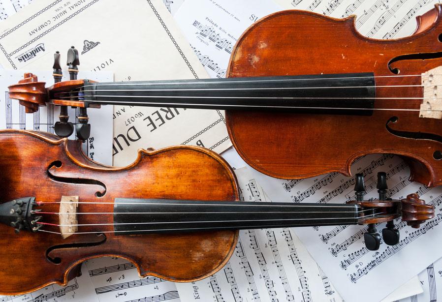 Viola i Violí