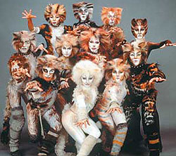 cats the play