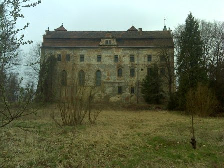 Zamek tył