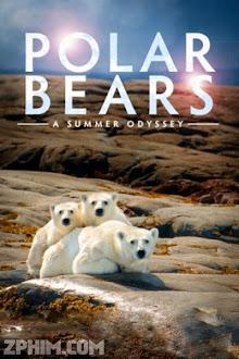 Gấu Bắc Cực - Polar Bears: A Summer Odyssey (2012) Poster