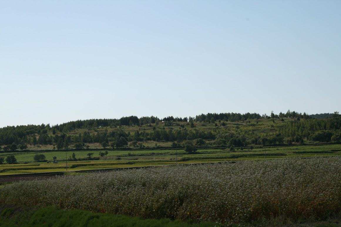 田園と青空