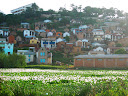Malagasy architecture in towns is a nice colonial style, and all towns still have scattered fields and rivers and ponds throughout them, so there are always beautiful views like this one!