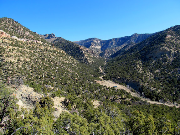 Looking up Cordingly Canyon