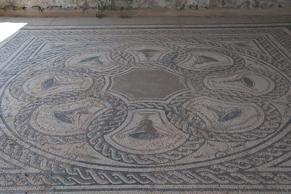 Colonia Clunia Sulpicia - Mosaico Casa III