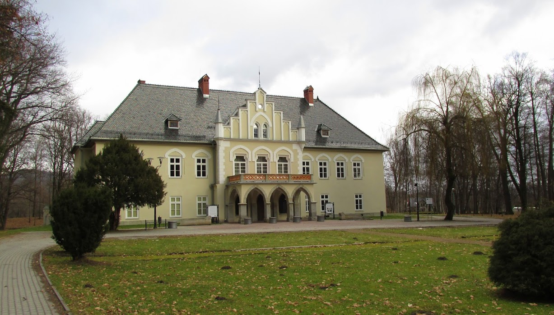 Dwór, zamek w Łodygowicach.