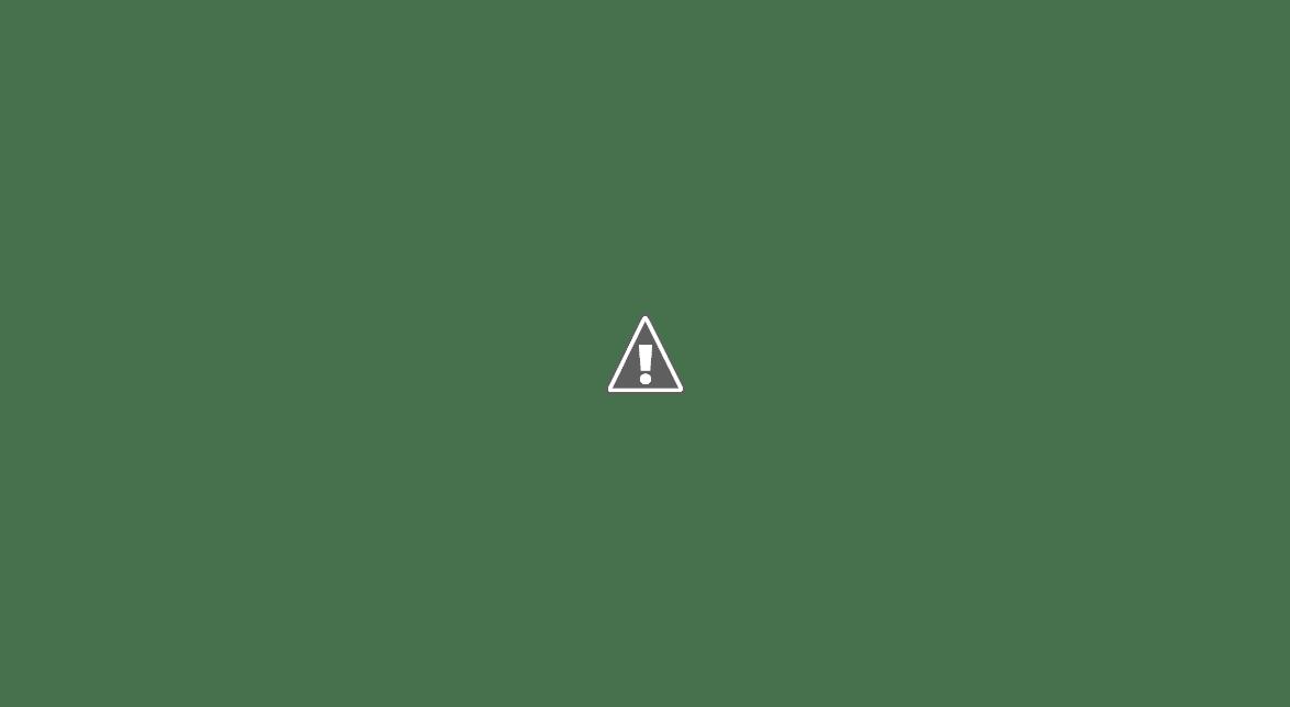 Кавказские казаки