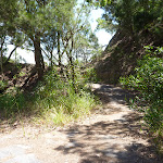Track near the pedestrian over bridge on the Wallarah Pennisula (388889)