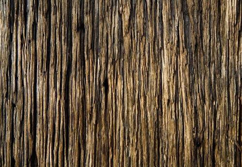 tekstur kayu gratis