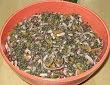 Salade de lentilles vertes du Puy