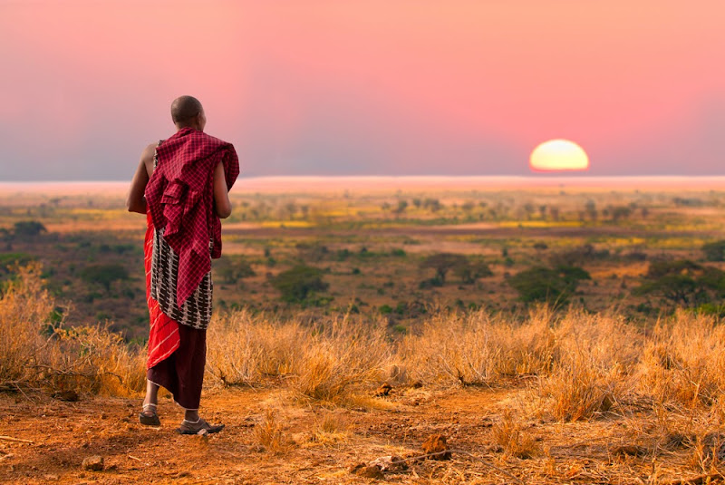 Masai Warrior watching sunset in the Serengeti