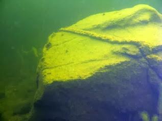 Detalle de una roca