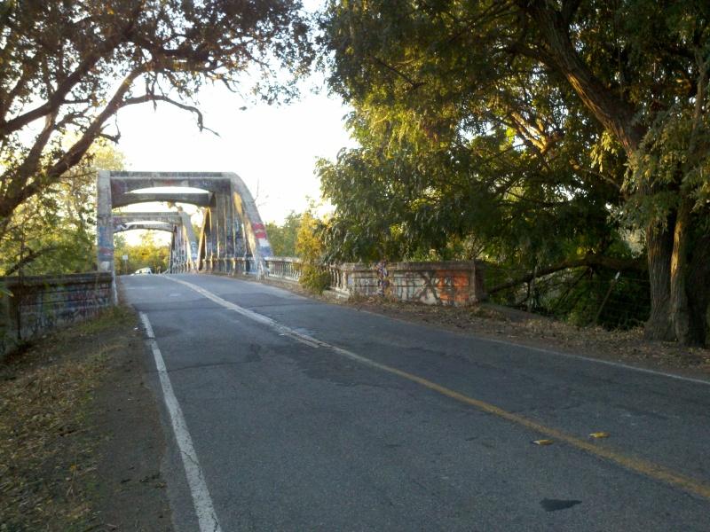 Foxy's Fall Century • Graffiti-Covered Stevenson Bridge
