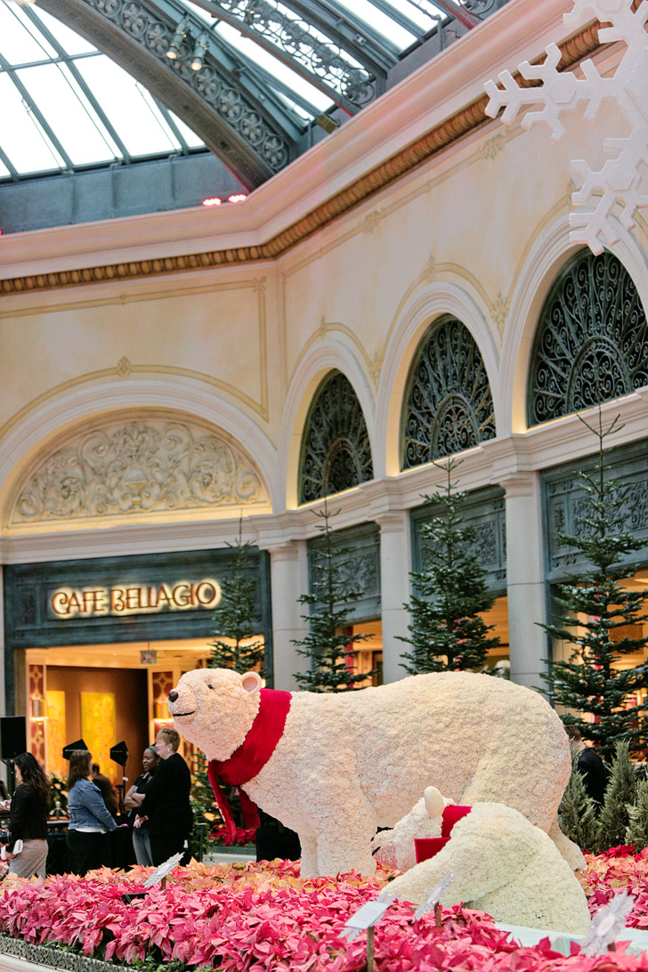 Polar Bears at Bellagio Conservatory & Botanical Gardens.