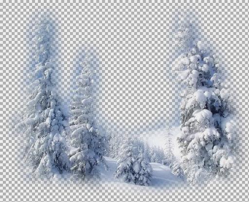 1250147478_paysages.pspimage.jpg