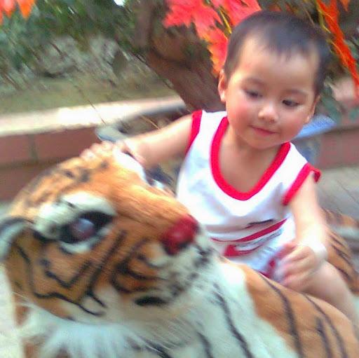 Thuy Ma Photo 12