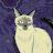Hen Bradshaw avatar image
