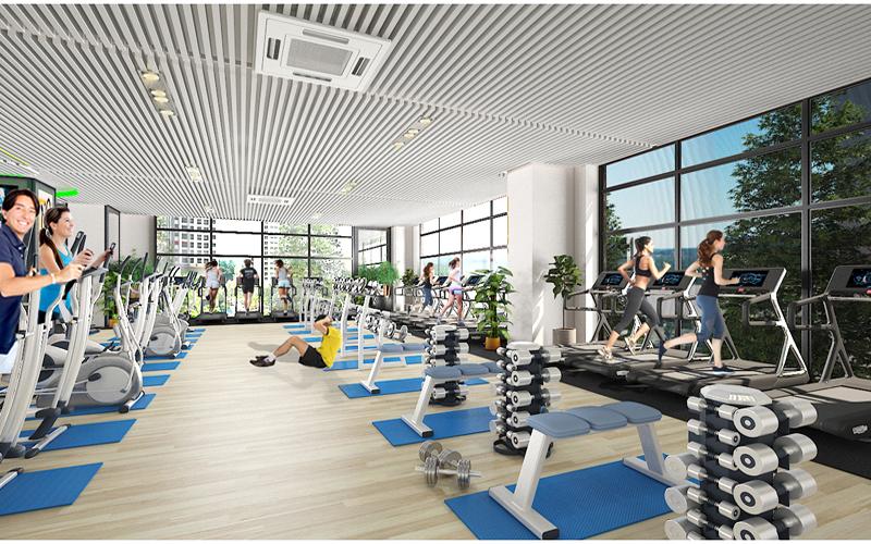 Phòng tập gym theo tiêu chuẩn 5 sao