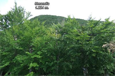 Vista de Umandia por su cara norte