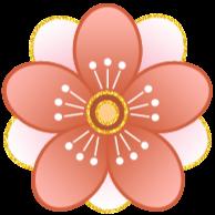 Yukiko Nakamura