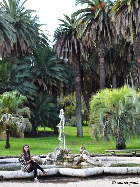 Roma - palmierii din gradina botanica