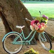 К чему снится велосипед?