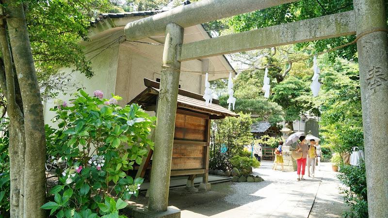 鎌倉 御霊神社 あじさい 写真4