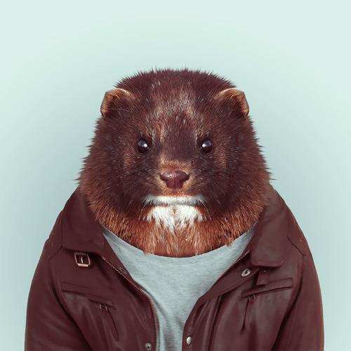 *Zoo Portraits動物時尚秀:正經八百時裝篇! 22