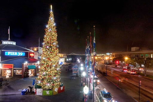 Pier 39 has a stunningly-lit tree that is traditional in every sense of the word with the exception of the enormous flashing lights that appear to be ... & In Search Of San Franciscou0027s Best Holiday Displays | Hoodline azcodes.com