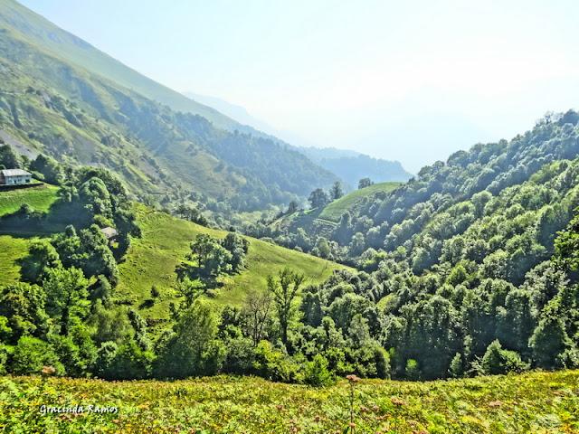 passeando - Passeando pela Suíça - 2012 - Página 27 DSC03470
