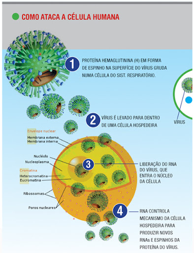 Laminas De Como Prevenir La Influenza | MEJOR CONJUNTO DE FRASES