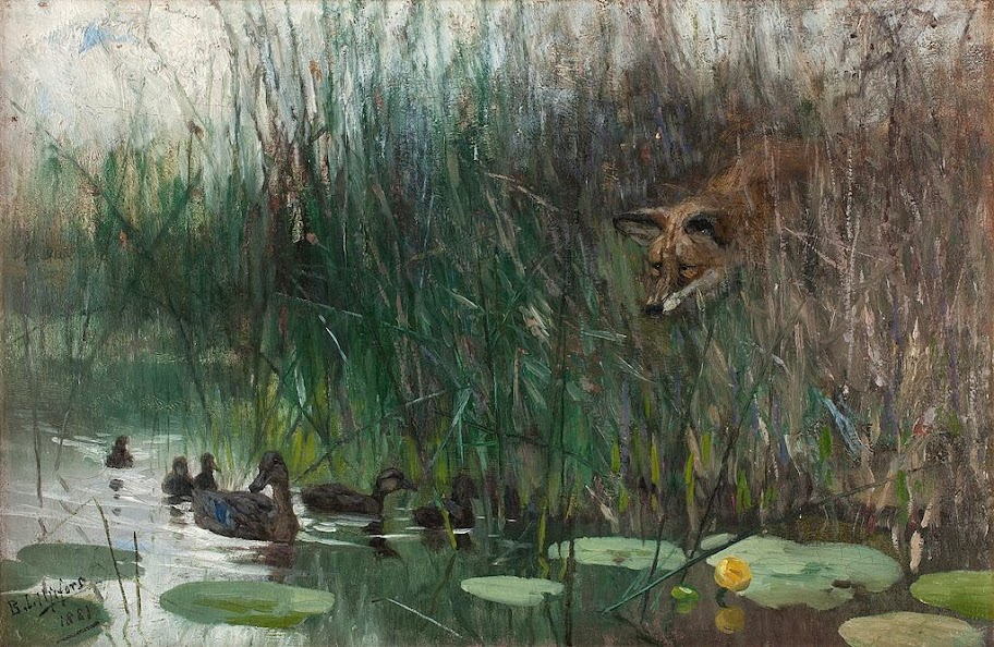 Bruno Liljefors - Flock of ducks and sneaky fox
